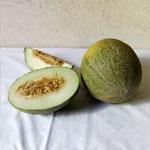 melon mochuelo