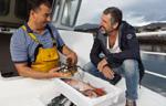 Artesanía de la pesca